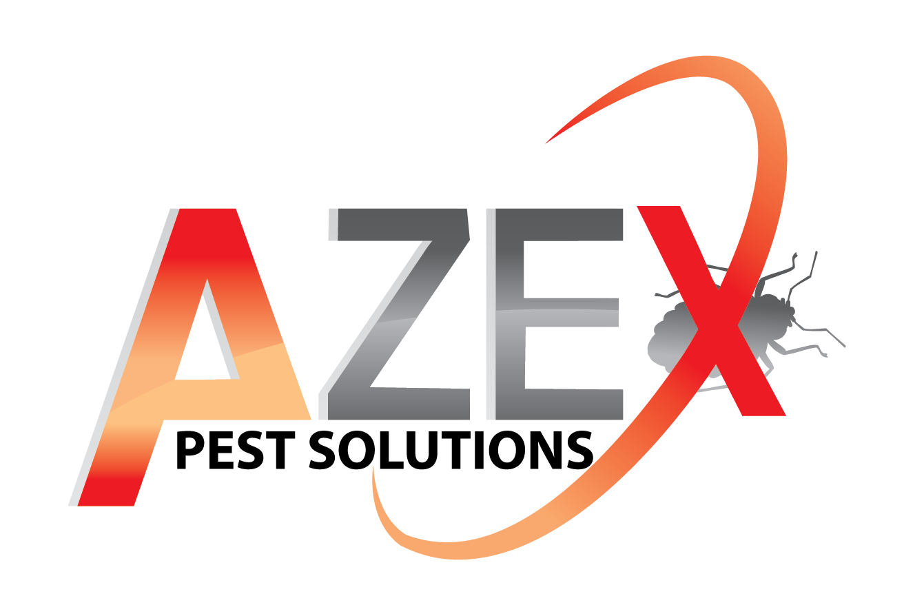 AZEX_Xlogo_WEB Transparent_white glow